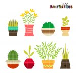 Plants on Pot